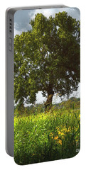 The Shade Tree Portable Battery Charger