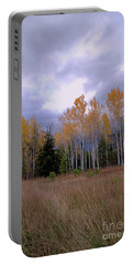 The  Song Of The Aspens 2 Portable Battery Charger