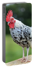 The Speckled Chicken Portable Battery Charger