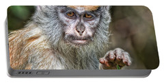 The Stare A Baby Patas Monkey  Portable Battery Charger by Jim Fitzpatrick