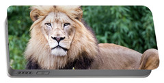 The Stare Down Portable Battery Charger