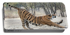 Portable Battery Charger featuring the photograph The Stretch by Pravine Chester