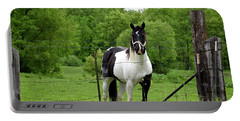 The Strong Horse Portable Battery Charger