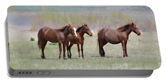 Portable Battery Charger featuring the photograph The Three Amigos by Benanne Stiens