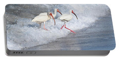 The Tide Of The Ibises Portable Battery Charger