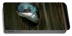 The Tree Swallow Portable Battery Charger
