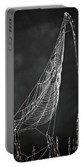 Portable Battery Charger featuring the photograph The Web by Tom Cameron