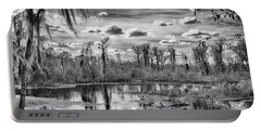 Portable Battery Charger featuring the photograph The Wetlands by Howard Salmon