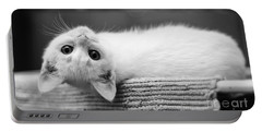 The White Kitten Portable Battery Charger