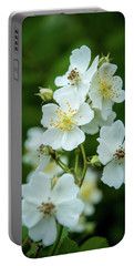 Portable Battery Charger featuring the photograph The Wild Rose by Mark Dodd