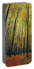 Portable Battery Charger featuring the photograph The Woods In The North by Michelle Calkins