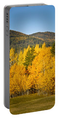 Them Thar Hills Portable Battery Charger