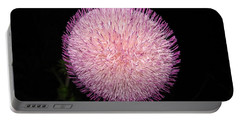 Portable Battery Charger featuring the photograph Thistle Bloom At Night by J R Seymour
