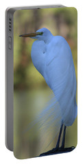 Portable Battery Charger featuring the photograph Thoughtful Heron by Kim Henderson