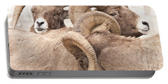 Three Bighorn Rams Portable Battery Charger