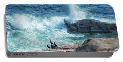 Three Cormorants At Monument Cove, Acadia National Park Portable Battery Charger