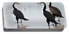Portable Battery Charger featuring the photograph Three Cormorants by Werner Padarin