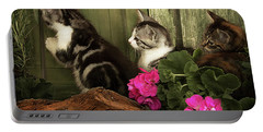 Three Cute Kittens Waiting At The Door Portable Battery Charger