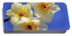 Portable Battery Charger featuring the photograph Three Daffodils by Judy Vincent