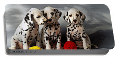 Three Dalmatian Puppies  Portable Battery Charger