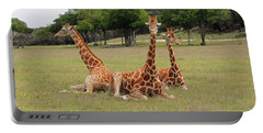 Three Giraffe At Fossil Rim Portable Battery Charger by Jayne Wilson