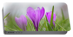 Three Glorious Spring Crocuses Portable Battery Charger