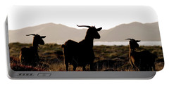 Three Goats Portable Battery Charger