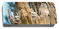 Three Great Horned Owl Babies Portable Battery Charger