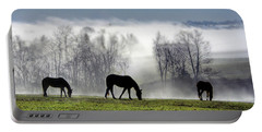 Three Horse Morning Portable Battery Charger