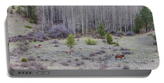 Three Horses Portable Battery Charger by James BO Insogna