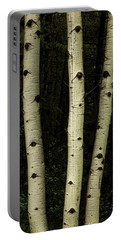 Portable Battery Charger featuring the photograph Three Pillars Of The Forest by James BO Insogna