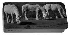 Three Shires Portable Battery Charger
