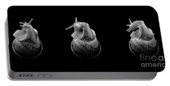 Three Snails Portable Battery Charger