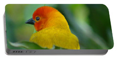 Through A Child's Eyes - Close Up Yellow And Orange Bird 2 Portable Battery Charger by Exploramum Exploramum