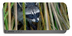 Through The Reeds - Raccoon Portable Battery Charger