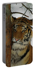 Tiger 2 Da Portable Battery Charger by Ernie Echols
