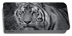 Tiger In The Grass Portable Battery Charger by Darcy Michaelchuk