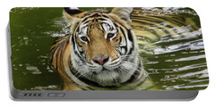 Portable Battery Charger featuring the photograph Tiger In The Water by Pamela Walton