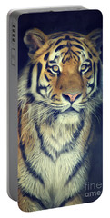 Tiger No 2 Portable Battery Charger