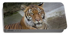 Portable Battery Charger featuring the photograph Tiger Tiger by John Black