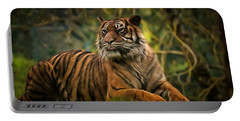 Portable Battery Charger featuring the photograph Tigers Beauty by Scott Carruthers