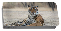 Tigress Arrowhead Portable Battery Charger