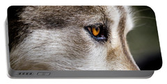 Portable Battery Charger featuring the photograph Timber Wolf Stare by Teri Virbickis