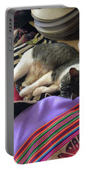 Time For A Siesta Portable Battery Charger