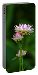 Portable Battery Charger featuring the photograph Tiny Dahlias Green Aura by Byron Varvarigos