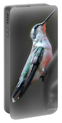 Portable Battery Charger featuring the photograph Tiny Dancer by Barbara S Nickerson