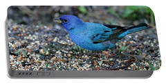 Tiny Indigo Bunting Portable Battery Charger