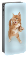Tiny Tiger Portable Battery Charger