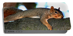 Tired Old Squirrel . R6622 Portable Battery Charger