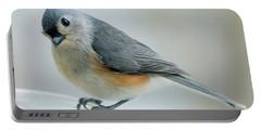 Titmouse With Walnuts Portable Battery Charger